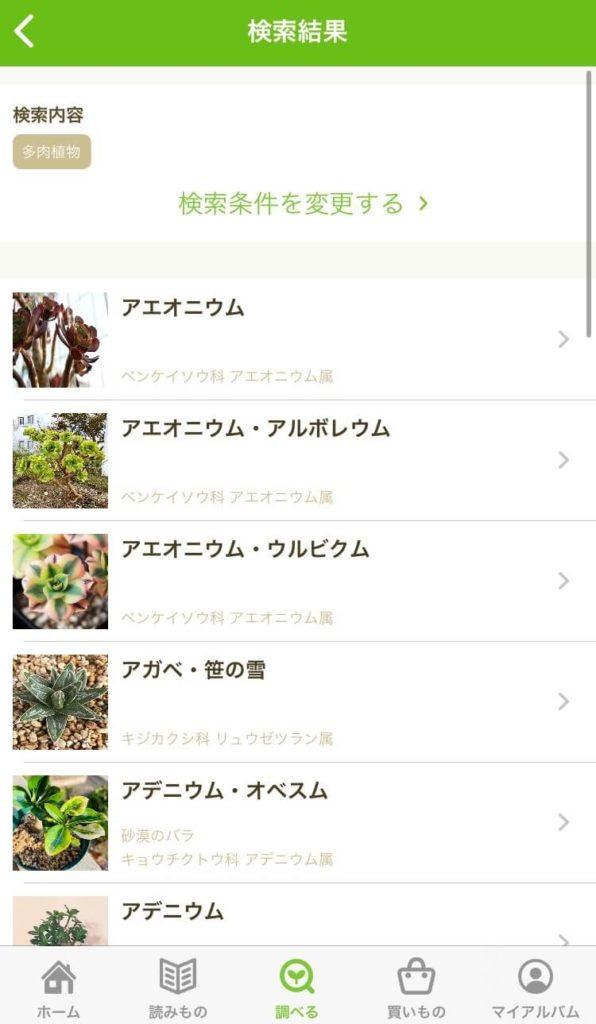 グリーンスナップと多肉植物